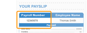 Your Payslip